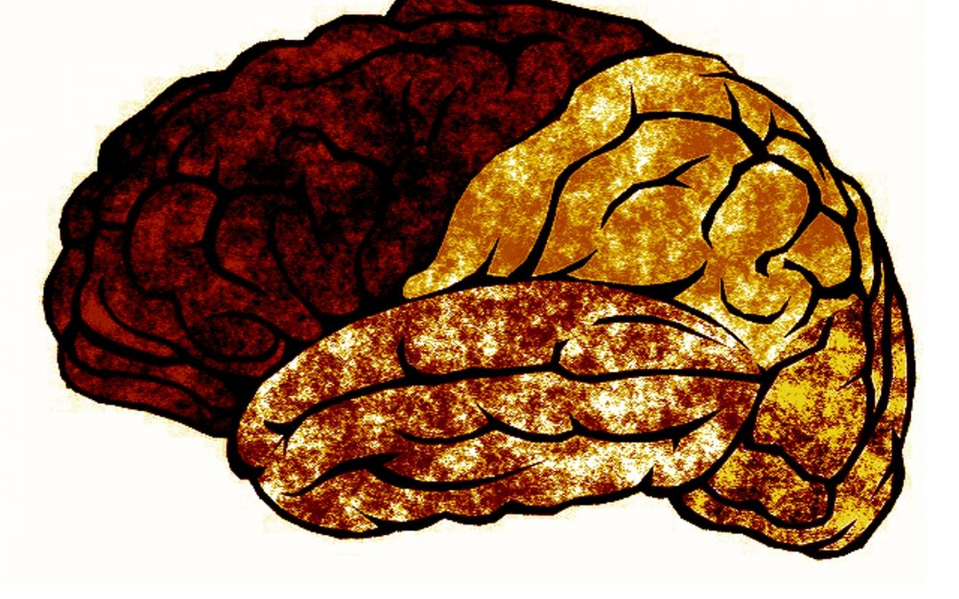 3 Strategies to Stop Brain Rot and Read More Books